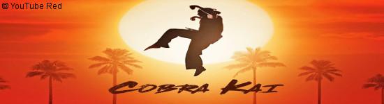 Cobra Kai - Teaser #1