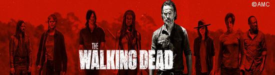 The Walking Dead: Staffel 9B - Heute geht es weiter